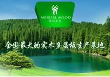 美森木业实木多层板生产基地