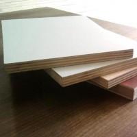 17mm杨木多层芯免漆板
