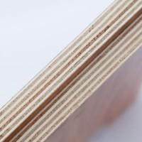 18mm桉木多层免漆生态板