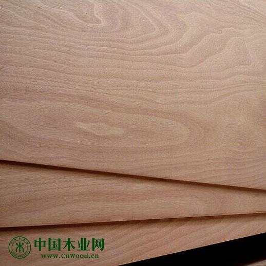 杨桉芯·18mm多层板