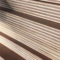 5.5mm杨桉木多层生态板