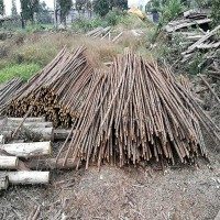 求购1.5米2米3米4米绿化杆