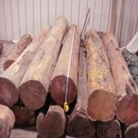 求购2米圆木