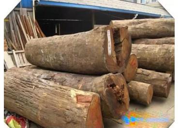 红木产业暴利的背后,风险系数也不是一般的大啊!
