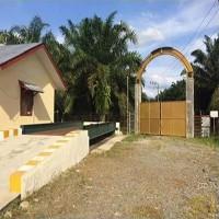印尼橡胶木加工工厂招商转让