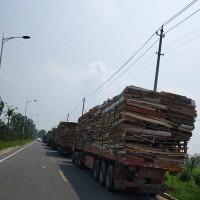 求购各类废旧木质可燃物