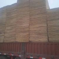 长期出售杨木三拼、杨木单板、杨木皮