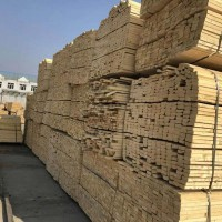 供应白松,落叶松,樟子松板材、木方