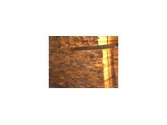 供应白椿木美式家具建材,白椿木