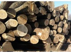 威龙betway必威官网手机版下载低价供应优质楸木原木
