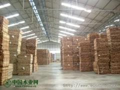 印尼橡胶木