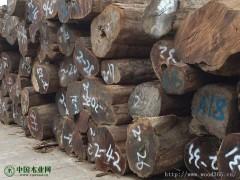 柬埔寨黑酸枝