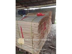 供应1270-1270-1.7mm地板基材面板专桉木单板