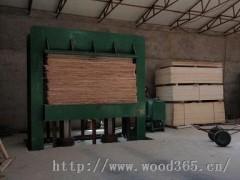 供应2手4*8尺建筑模板冷压机