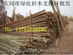 大同市园林绿化树木支撑支树杆总批发