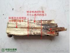 木材除霉剂 环保木材除霉除蓝变剂 快速无味高效除霉剂