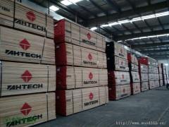 大量供应特级4/4个品牌美国红橡木