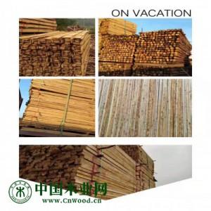 建筑木方 建筑模板 工程方