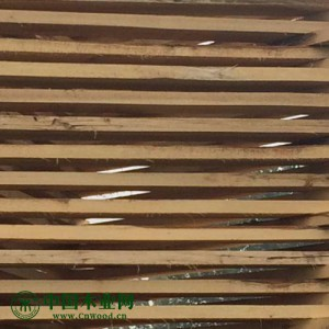 东北杨木板材