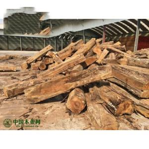 冈比亚刺猬紫檀木方新到货
