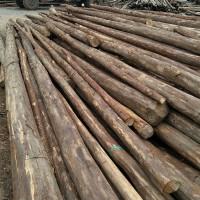 长年收购香杉木条木原木,杉木旧房料