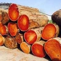 收购沙比利原木