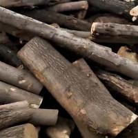 供应杂木原木