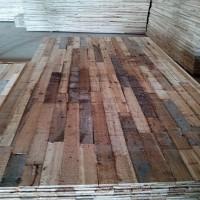 求购桉木芯细木工板