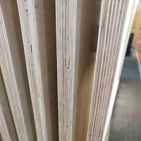 现货供应17厚多层整板整芯杨桉板