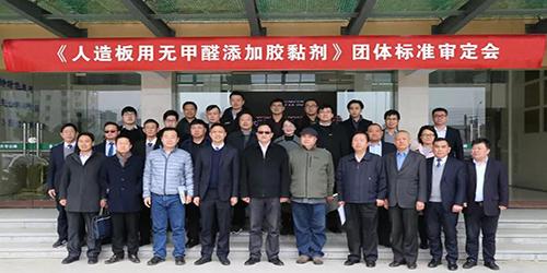 《人造板用无甲醛添加胶黏剂》团体标准审定会在浙江德清成功召开