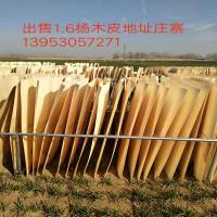 出售1.6杨木皮