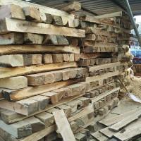 出售12桐木条4000多平方