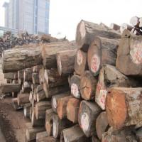 出售老挝大红酸枝原木