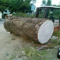 直销木材端头防裂液体蜡