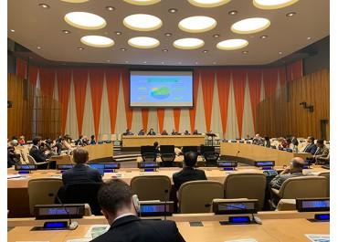 联合国举行2019年度国际森林日庆祝活动