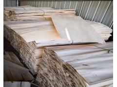 长期供应杨木皮子