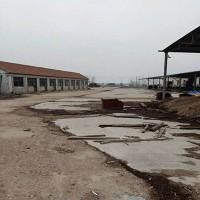 岚山碑廓镇二十二亩木材加工厂房出租