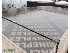 出口标准 18mm 高档建筑覆膜板 酚醛胶 厂家直销