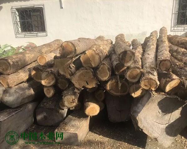 中美洲木材微凹黄檀原木