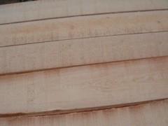 求购4米樟子松板