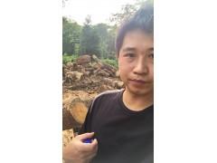 南美琥珀木(物美价廉)