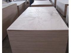供应8mm优质杨木多层板胶合板