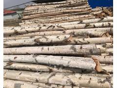 销售国产小径桦木原木