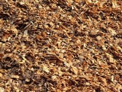 常年需求木屑或树皮