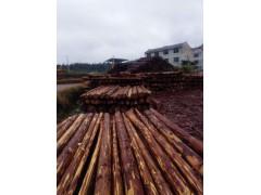 本土杉原木、据材销售