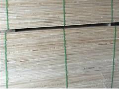 出售俄罗斯桦木无节材