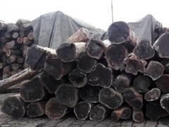 求购柬埔寨黑酸枝原木