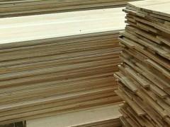 常年供应桐木拼板