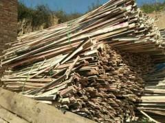 求购板边板头、模板板边、多层板边、杨木大柴