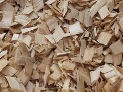 大量供应松木、杨木造纸木片